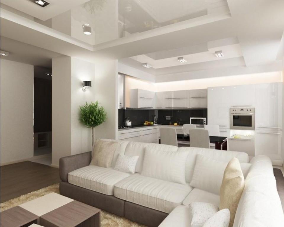 Az igazi nappali. Hall a tetőtéri stílusban. A stúdióból A ...