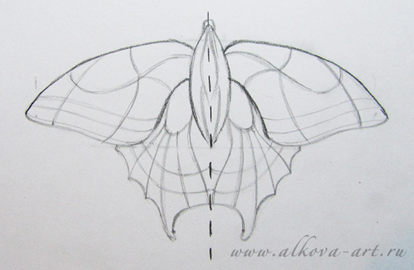 Drawing Lines Of Symmetry : Contour drawings of butterflies in pencil. how to draw a butterfly