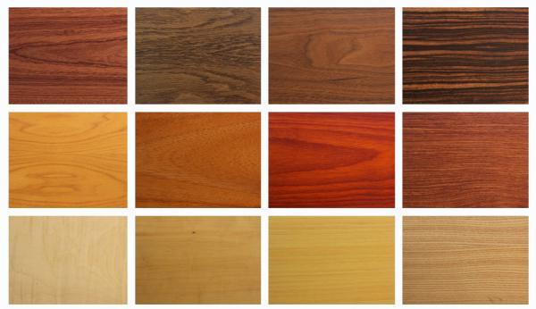 древесины фото цвета для мебели