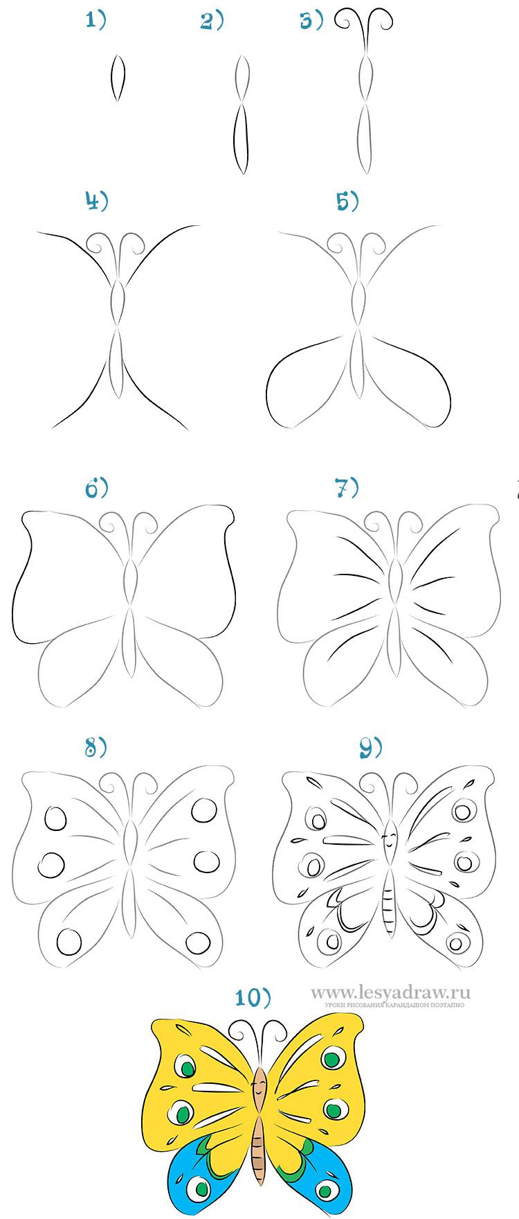 Фото бабочек для детей карандашом